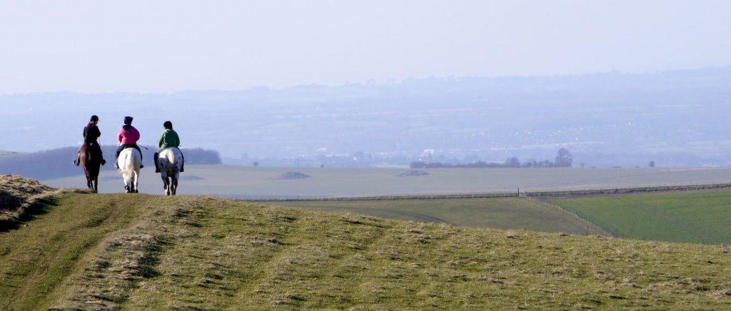 Trois personnes de dos qui font de la randonnée à cheval à la campagne